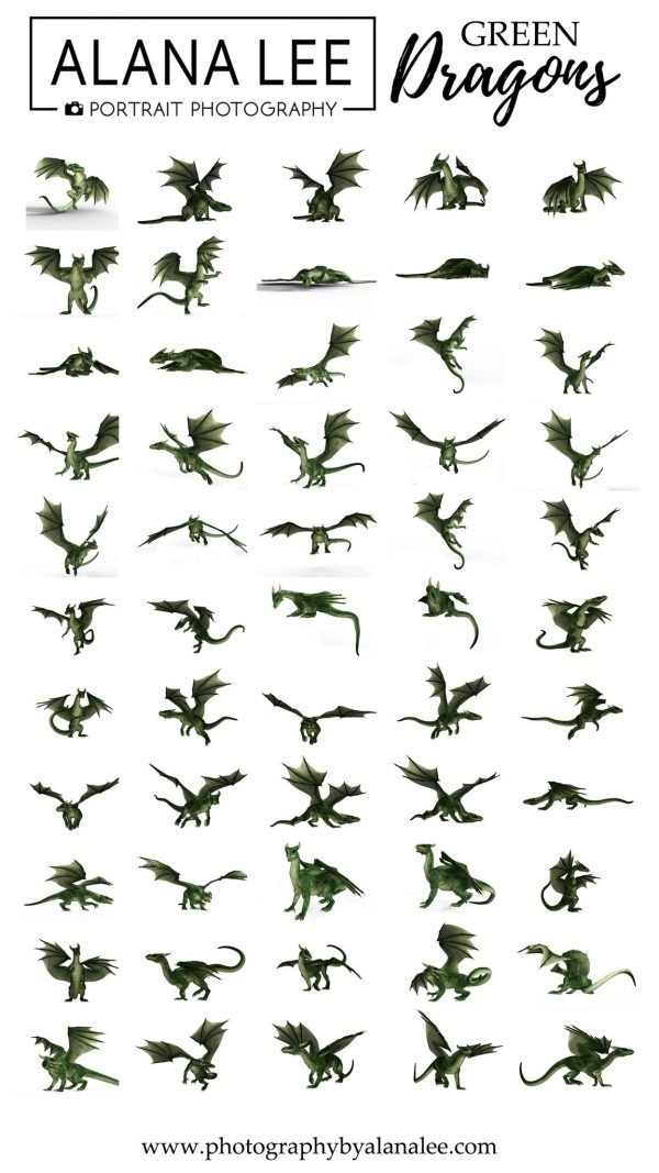 Alana Lee Photography: Green dragon digital overlays for photoshop
