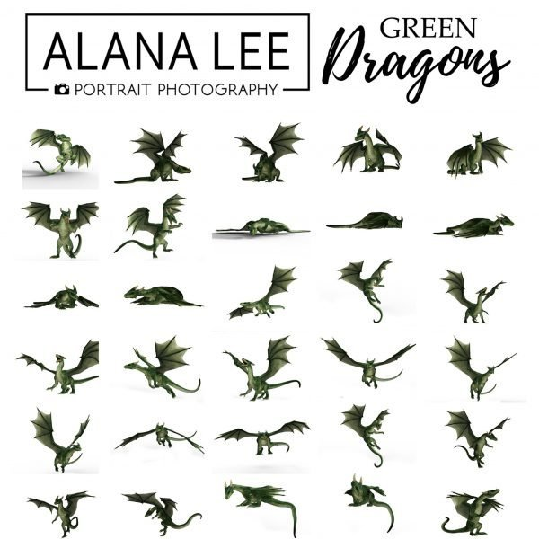 green dragon digital overlays and stock images for photographers and digital artists