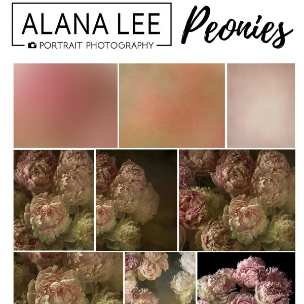 painterly style peony flower digital backgrounds, textures and overlays for photographers