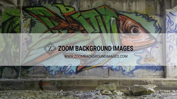 zoom virtual background images