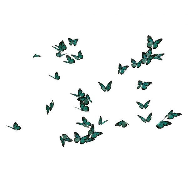 group of butterfly overlay for photoshop