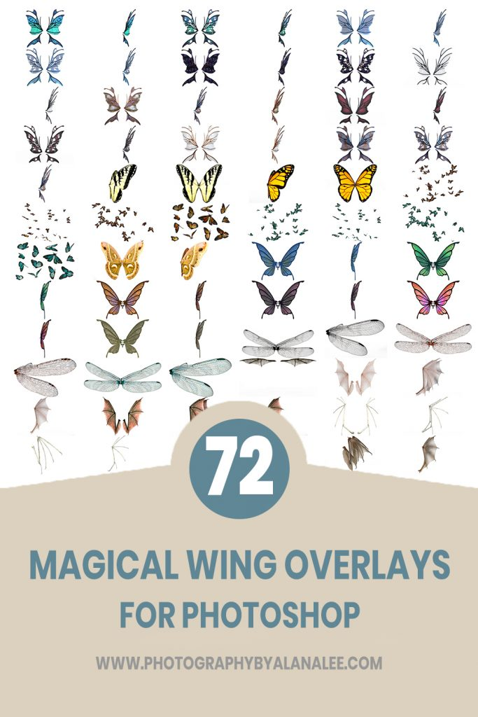 The best collection of wing overlays for photoshop including butterfly, dragonfly, bat, butterfly and dragon wings
