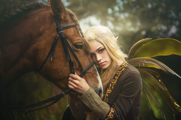 portrait of elf in forest with horse and wing overlays