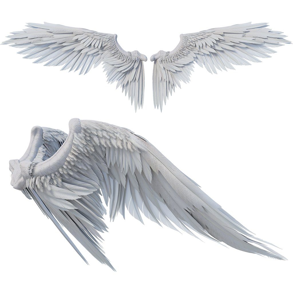 white angel wing overlays for photoshop