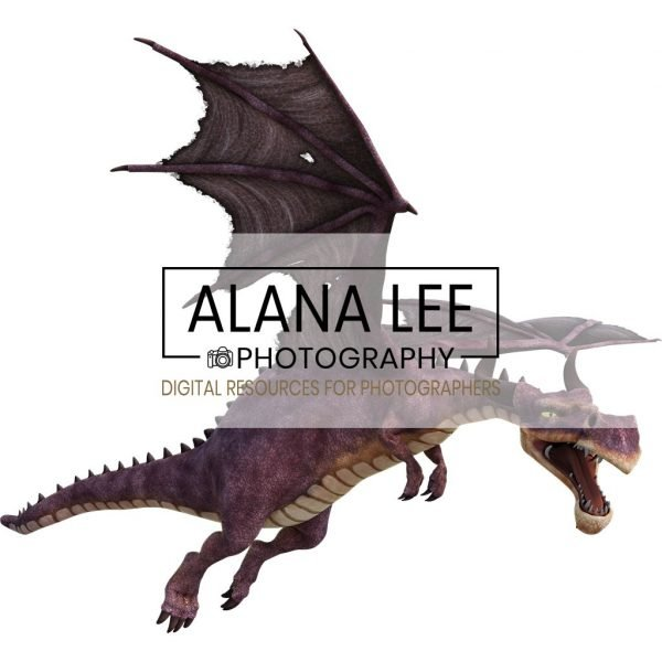 high quality fairytale dragon overlay for photoshop