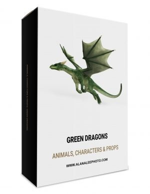 green dragon overlays for digital art and photography