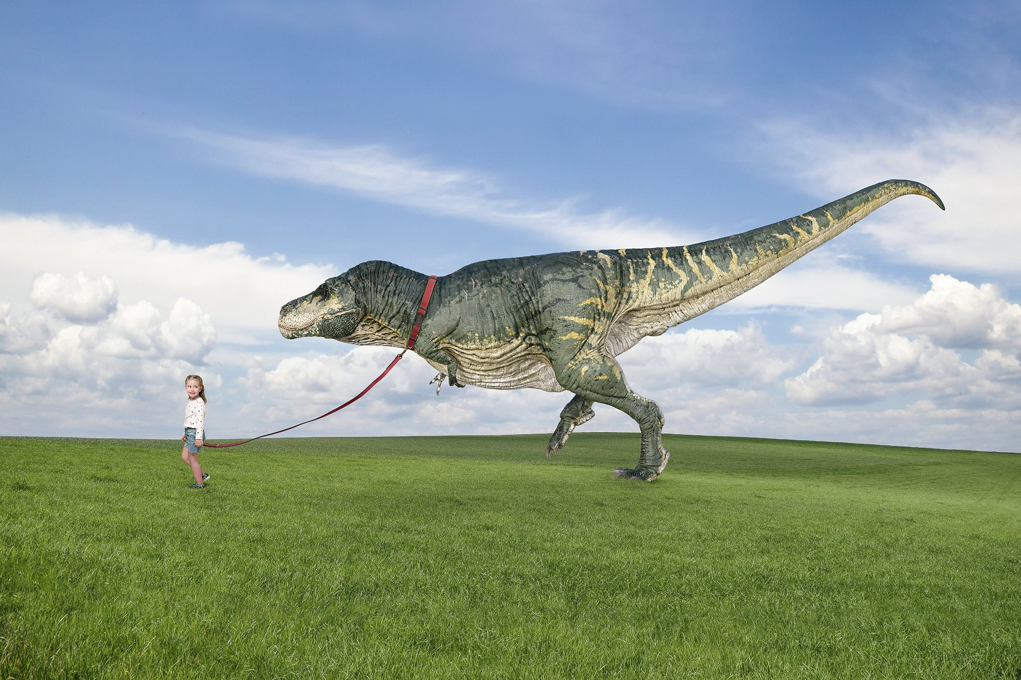 a photoshop composite image by Alana Lee of a girl walking her pet tyrannosaurus rex across a green field with blue sky
